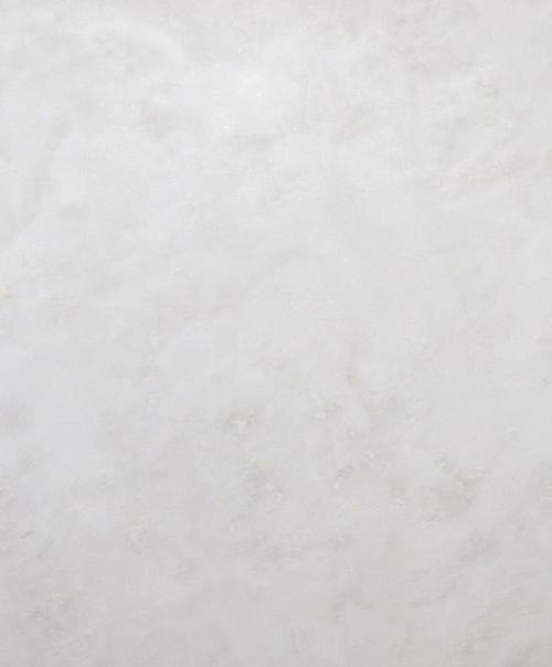 bianco-rhino